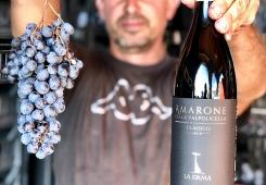 Grapes and Amarone